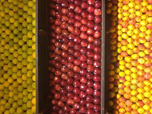 awesome fruits